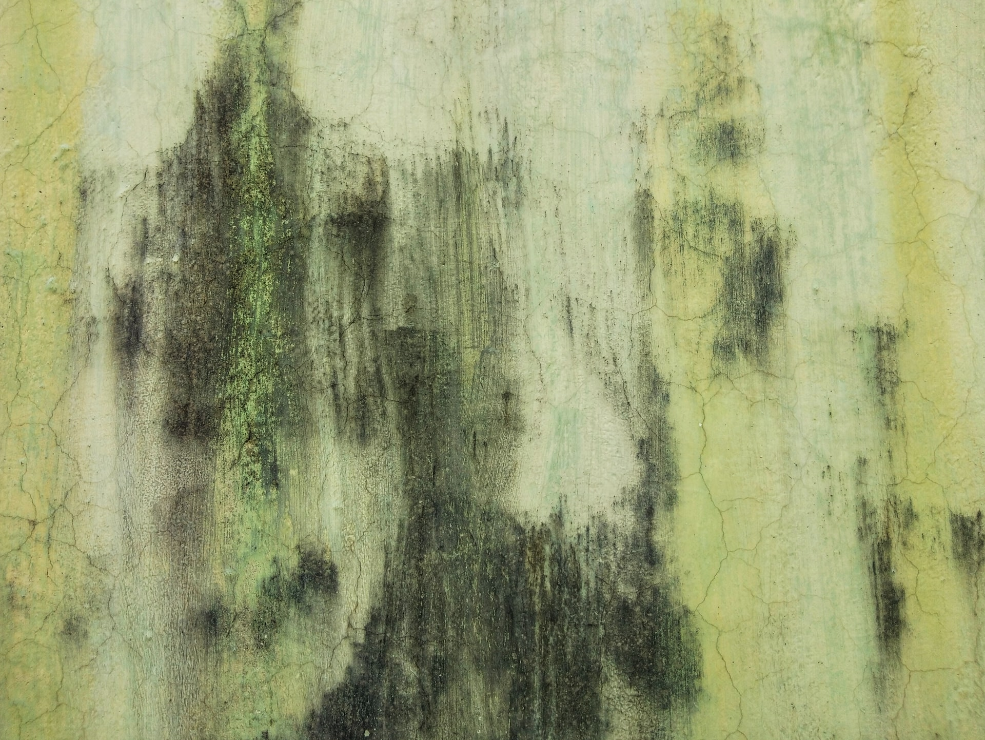 Mold and cracks on the home exterior walls